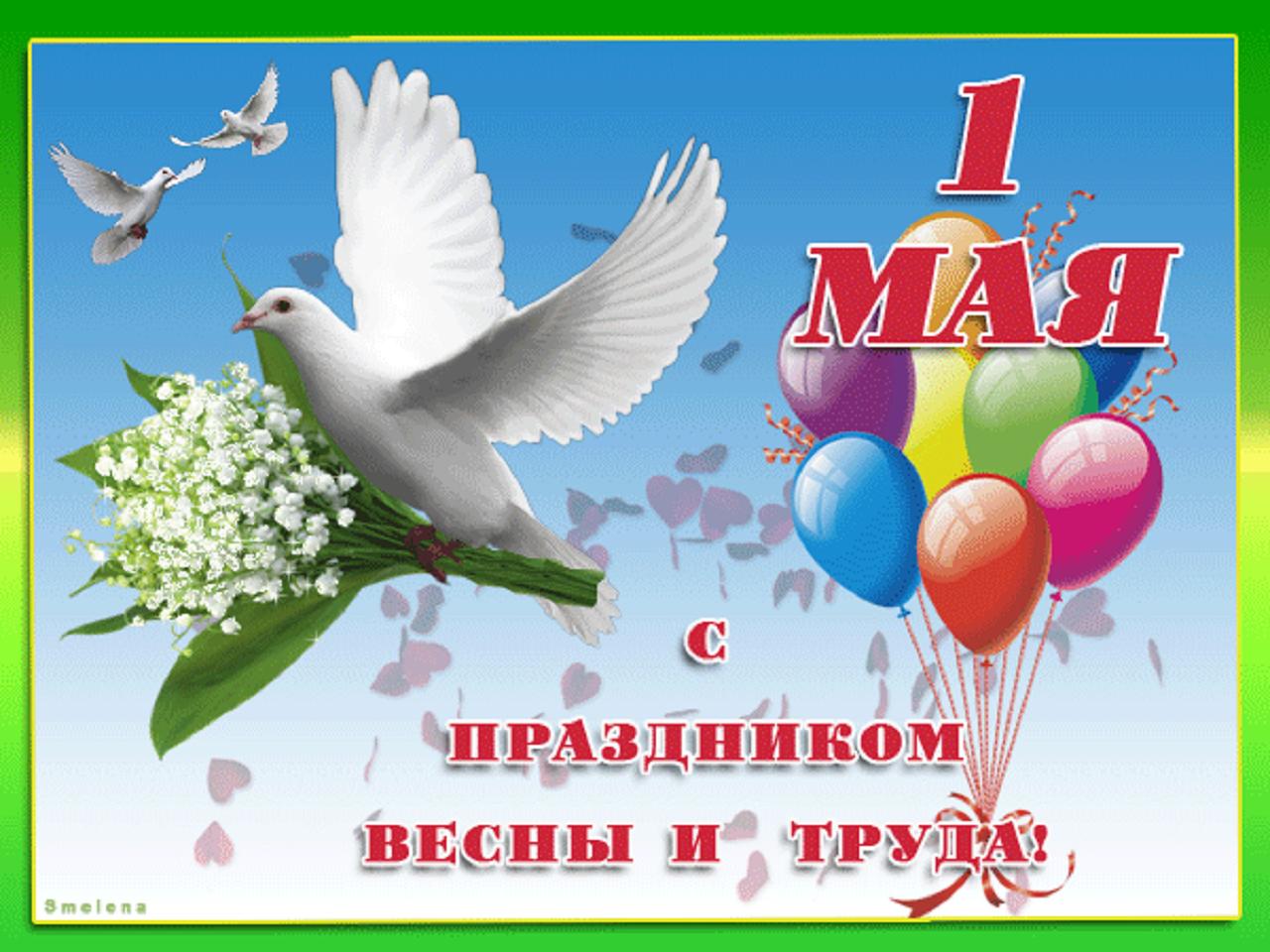Vivat_1_may